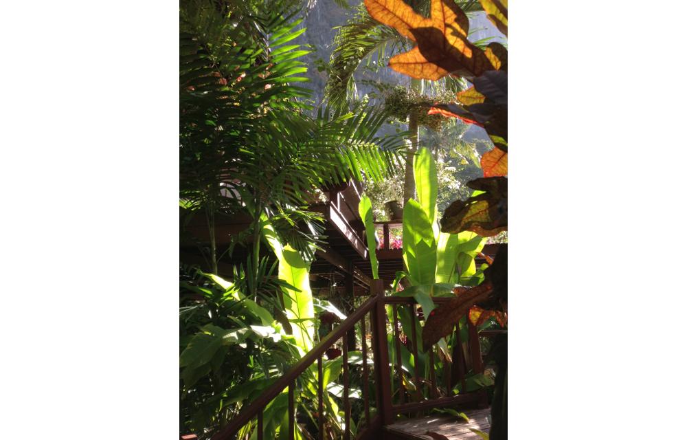 Beautiful, Lush Garden Entrance