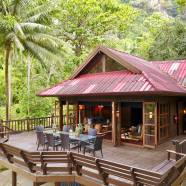 Baan Tree House